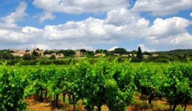 Domeniile Clos des Colombes: Un tinut fermecat pe celebra Riviera Romaneasca
