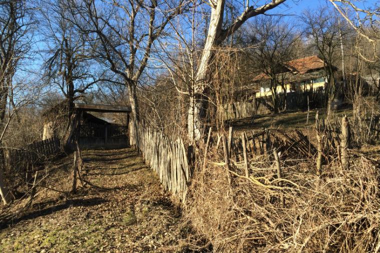 !!!! Reportaje in satele romanesti: moartea lenta, de mainile primarilor