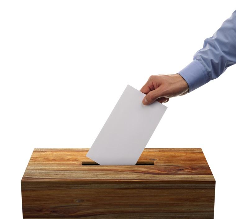 Alegeri locale 2016: Peste un sfert din parlamentari candideaza la functii locale sau judetene