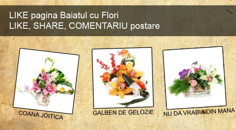 (P) Concurs Baiatul cu Flori: Castiga un aranjament de flori pe zi si cucereste cuconita!