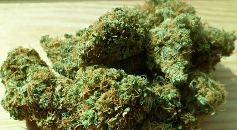 Peste 350 de kilograme de droguri, capturate la Biroul Vamal Otopeni