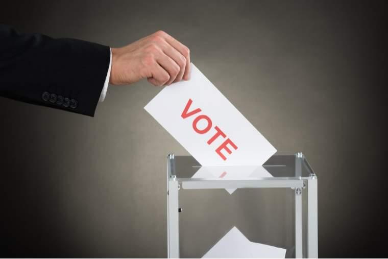 PNL Diaspora cere autoritatilor sa amenajeze sectii de votare pentru parlamentare in paralel cu votul prin corespondenta