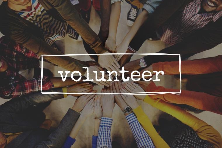 Voluntariat la Ministerul Muncii si la Agentiile Judetene pentru Plati si Inspectie