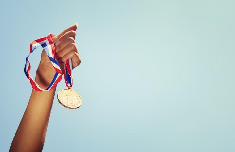 Lotul olimpic de informatica al Romaniei a castigat doua medalii de aur si doua de argint la Balcaniada pentru seniori