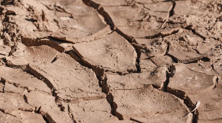 Semnal de alarma pentru agricultura: desertificarea ar putea sterge circa 7 milioane de hectare de teren