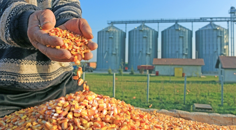 Fonduri europene nerambursabile de aproape 46 mil. euro, pentru investitii in agricultura