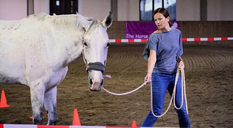 Un program de dezvoltare atipic pentru managerii care vor sa devina lideri: coaching cu ajutorul cailor