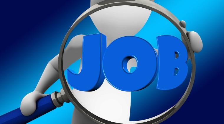 Toamna se numara job-urile: peste 36.000 de locuri de munca disponibile la nivel national