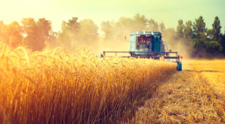 Fermierii romani nu profita decat in mica masura de recoltele-record din 2016 din cauza ca nu au depozite