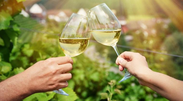 Patronat din industria vinului: Productia din 2016 va fi similara cu cea din anii anteriori