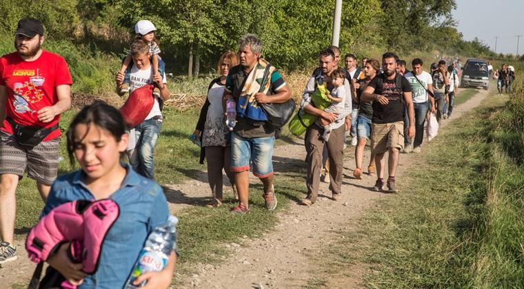 Doua grupuri de migranti au fost descoperite de Politia de Frontiera, sambata, la granitele Romaniei