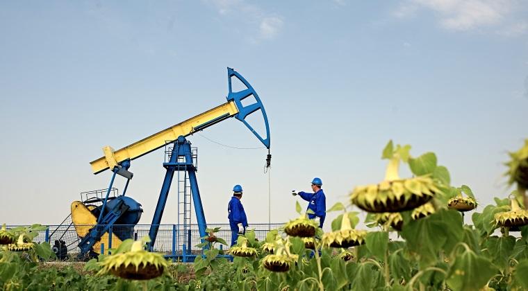 OMV Petrom revine pe profit in 2016. Taierea costurilor si a investitiilor readuce compania peste nivelul de un miliard de lei profit net si ii permite sa dea dividende