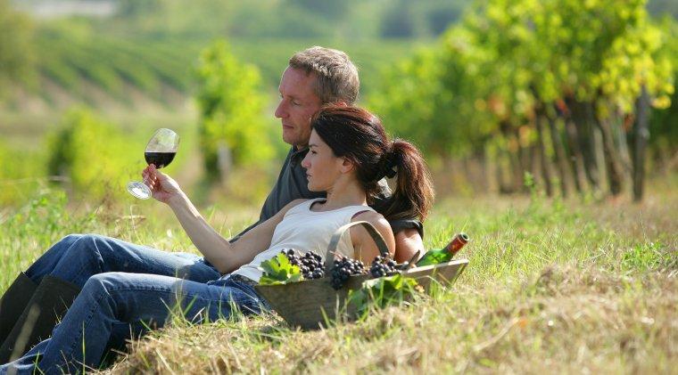 Turismul viticol in Romania: nu aduce bani si este greu de sustinut de crame. La ce ajuta totusi?