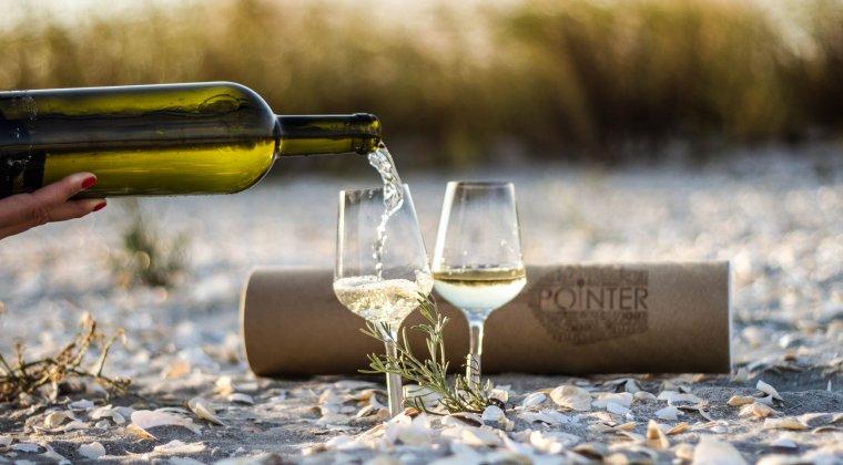 Afacere nascuta la picnic: cum o tanara romanca a reinventat paharul de vin pe care il vinde in SUA, Namibia, Bahrain sau Australia