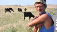 "LAPAR: Prevederile legale in vigoare stimuleaza munca ""la negru"" in agricultura"