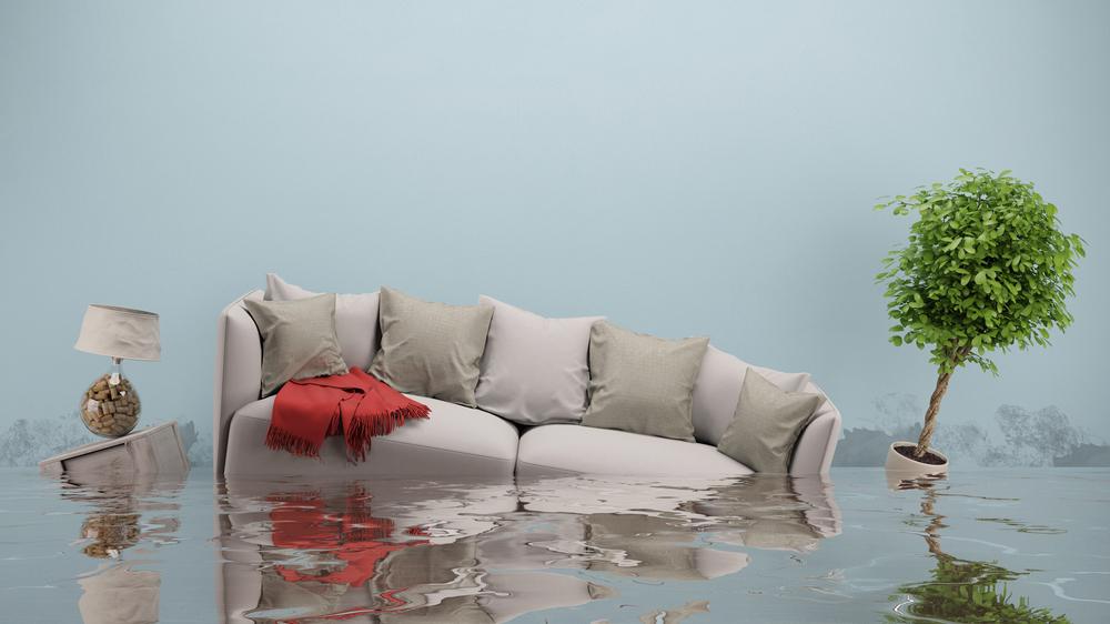 paid-a-platit-cele-mai-mari-despagubiri-in-judetele-valcea-galati-si-vrancea-in-ultimii-5-ani-pentru-inundatii-alunecari-de-teren-si-cutremur