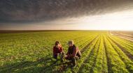 Agricover Credit IFN, crestere de peste 50% a profitului in primul semestru al anului 2018