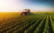 Ministerul Agriculturii aloca 30 milioane lei pentru Programul de stimulare a angajarii tinerilor in agricultura, acvacultura si industrie alimentara