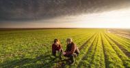 Carrefour lanseaza un program pentru fermierii romani care vor sa treaca la agricultura BIO