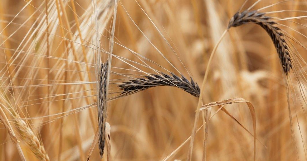 ministrul-agriculturii-vrea-sa-faca-rechizitii-i