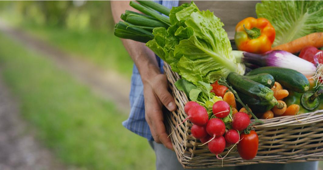Evoluția PIEȚEI BIO: România exportă aproape toată cantitatea produsă. Cum supraviețuiesc fermierii?