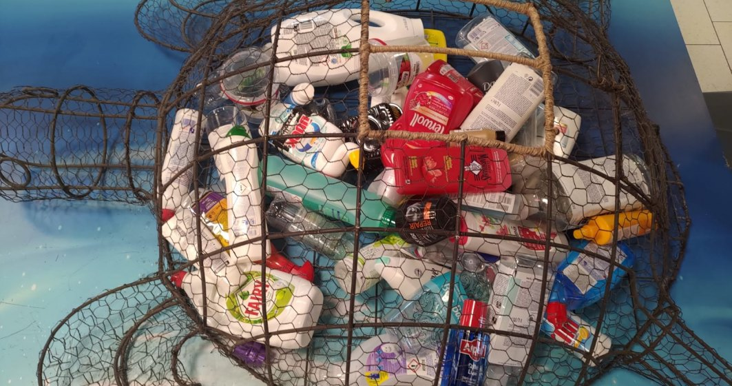 Cum poți recicla ambalajele produselor de îngrijire și obține cadouri sau vouchere de reducere