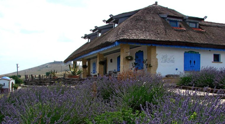 enisala safari village