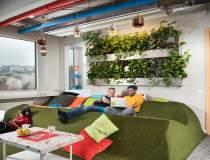 (P) Hub pentru startup-uri....