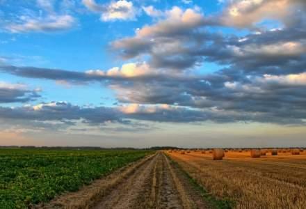 Ministerul Agriculturii vrea sa ingreuneze cumpararea de terenuri agricole de catre straini