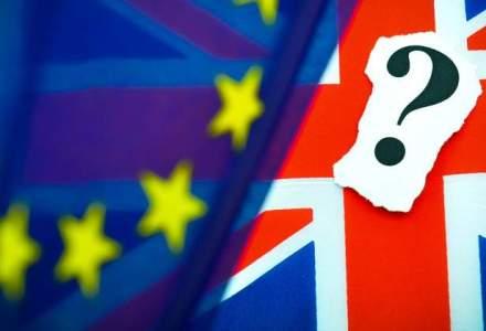 Coface: Impactul Brexit asupra mediului de afaceri din Romania, destul de redus. Firmele cu actionariat din Marea Britanie au 2% din totalul salariatilor