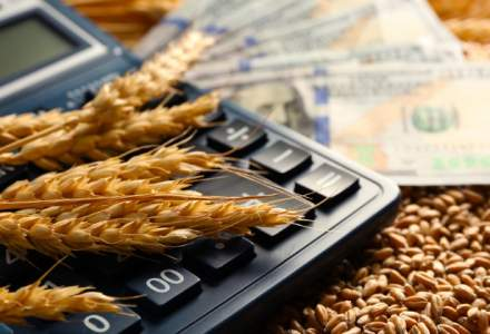 Ministerul Economiei pune la bataie circa 26 mil. lei pentru infiintarea de IMM-uri in mediul rural