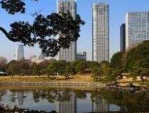 DTZ: Dezastrul din Japonia va...