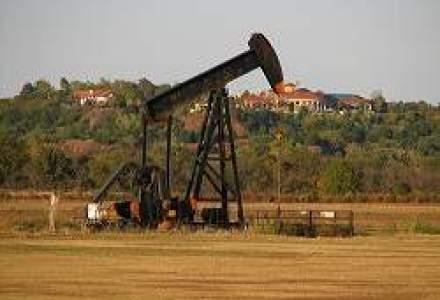 PwC: Companii multinationale vor sa preia firme romanesti de utilaje si servicii petroliere