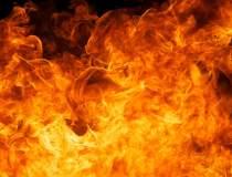 Incendiu in Portul Constanta:...