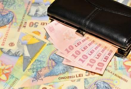 Euforia creditelor in lei continua in randul populatiei: soldul a crescut cu 30% intr-un an