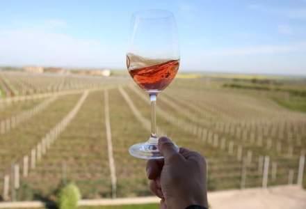 Harta turismului viticol in Romania: cate crame sunt deschise pentru turisti