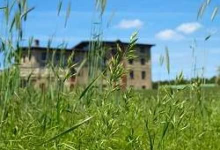 Proprietarul Altex a batut palma cu NEPI pentru un teren de 5 hectare