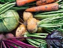 Agricultura 100% organica nu...