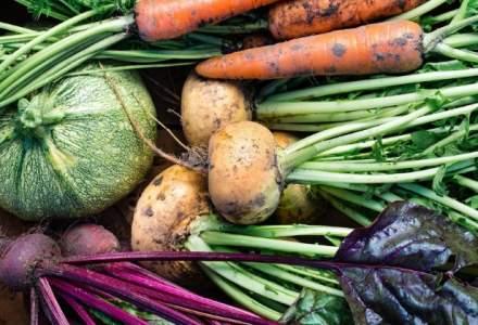 Agricultura 100% organica nu mai este doar un vis pentru Danemarca