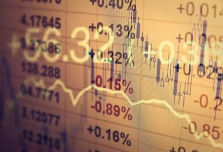 Bittnet Systems, prima companie de IT listata pe Bursa de la Bucuresti, si-a rasplatit investitorii cu un randament al actiunilor de aproape 200% in acest an