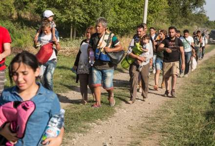 Arad: Douazeci de migranti afroasiatici, prinsi incercand sa treaca granita spre Ungaria prin camp