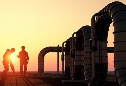 ROPEPCA: Rezervele dovedite de gaze ale Romaniei se vor epuiza in noua ani, iar cele de titei in 12 ani