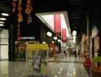 Dezvoltatorul mall-ului...