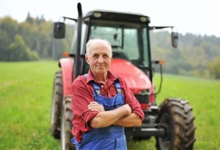 Noi reguli pentru vanzarea de terenuri agricole. Cum vrea Guvernul sa limiteze asaltul strainilor pe ogoarele patriei