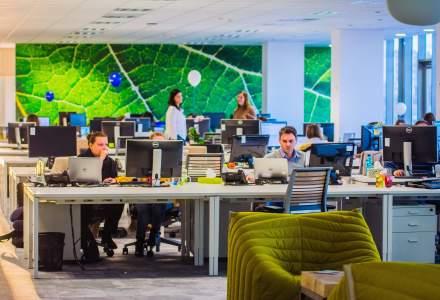 Cand confortul primeaza: cum creste productivitatea angajatilor cand investesti in mobilier si accesorii de calitate