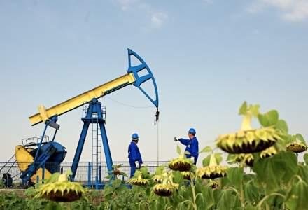 Rezultate financiare OMV Petrom: gigantul energetic raporteaza la 9 luni un profit net in scadere cu 11%