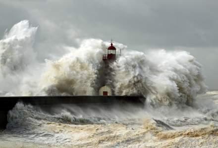 Un tsunami a lovit coasta nord-estica a Noii Zeelande
