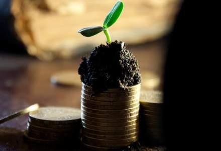 STUDIU: Cele mai multe firme profitabile si de incredere din Romania au capital autohton, fiind in special IMM-uri