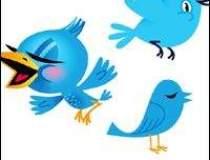 Twitter, investigat in SUA...
