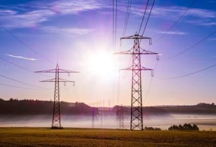 Grupul E.ON a schimbat numele distribuitorului de gaze si electricitate de pe piata romaneasca in Delgaz Grid